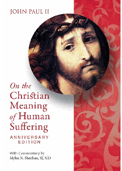 Christian Meaning Human Suffering (30Th Anniv Ed)