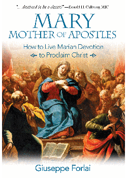 Mary Mother Of Apostles How To Live Marian Devotion To Proclaim